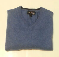 Allen Solly Men Size M Cashmere Sweater V-Neck Blue