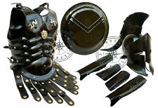 300 King Spartan Helmet Set of Muscle Armour Shield Arm & Leg Guard Halloween