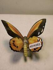 +# A014383 Goebel Archiv Muster Schaubach Schmetterling Butterfly Schau37 Plombe