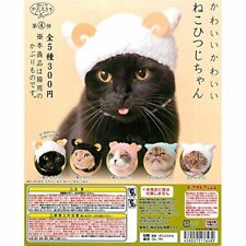 KITAN CLUB ART IN THE POCKET Sculpture of Cat by Mio Hashimoto Tuxedo Cat