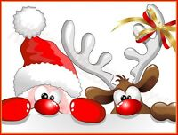 CHRISTMAS CUTE FUNNY SANTA AND RUDOLPH REINDEER T-SHIRT - MENS WOMENS KIDS