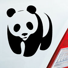 Auto Aufkleber PANDA Pandabär Bär Süss Lustig Aufkleber Sticker Tier Bear 052