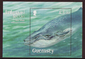 GUERNSEY 2011 ENDANGERED SPECIES BLUE WHALE MOUNTED MINT