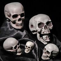 Décoration de fête Objet de jeu Horrible Squelette Crâne Halloween Pendentif