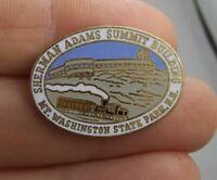 Vintage Mt Washington State Park New Hamphire Souvenir pinback button pin *EE94