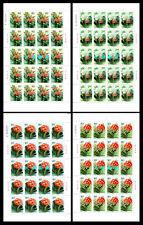 China 2000-24 Clivia Flower Stamp full sheet