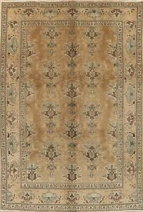 Vintage Peach Brown MUTED Kashmar Area Rug Antique-Washed Color Wool Carpet 7x10