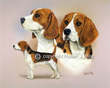 Beagle Multistudy Giclee Print by Robert J. May