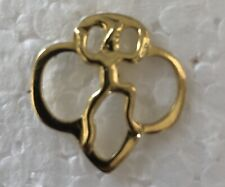 """/ Broach Approx. 1"""" length Vintage Browniel (Pre-Girl Scouts) Pin"""