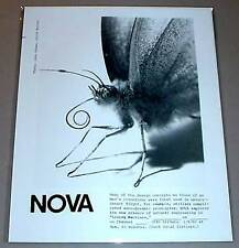 Moth / Butterfly Insect Close-Up - Nova Pbs Tv Photo
