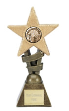 Participation Glitter Star Trophy Award ENGRAVED FREE