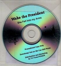 (CJ81) Wake The President, She Fell Into My Arms - 2011 DJ CD