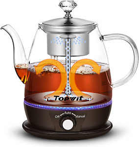 Water Boiler Electric Kettle Teapot Tea Maker With Stainless Steel Infuser 1L