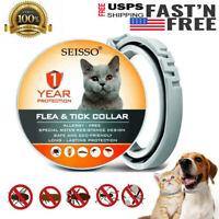 DEWEL Flea Tick Collar Anti Flea & Tick Insect for Small Medium CAT Dog 1 Year