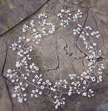 Long Hair Vine Tiara crown bridal bridesmaids baby's breath Gypsophila 20""