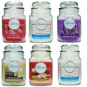 18oz Large Scented Candles In Glass Jar Assorted Fragrance Home Xmas Gift Pack