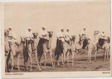 ITALIA 1936 AFRICA ORIENTALE FASCISMO Meharisti,Cavalleria Coloniale