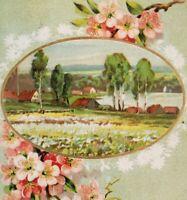 Sweet Birthday Joy Postcard Country Scene Embossed Pink Flowers Germany