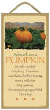 Advice From A Pumpkin wood Inspirational Sign wall Novelty Plaque garden Usa