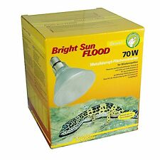 Lucky Reptile - Bright Sun FLOOD Desert 70 Watt Lampe