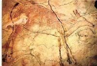 BR4616 Santillana del mar Santander Cuevas de Altamira  postcard spain