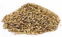Whole Fennel Seeds All Natural by Its Delish, 5 lbs bulk