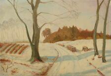 A. Waldrup » Sonnige Winterlandschaft «