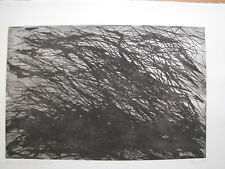 "Max Uche Etching 1985 "" buschformation on the Water "" DAT Titled, AUTOGRAPHED"
