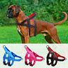 Harnais en nylon pour chien Réfléchissant Réglable Avec poignée anti traction