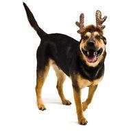 Kyjen Dog LED Antlers Holiday Christmas  Pet Xmas Reindeer LIGHTS UP!! Headband