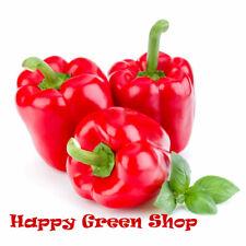 VEGETABLE - SWEET PEPPER - RED BELL - 100 Seeds