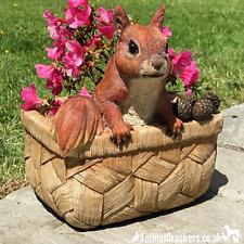 More details for squirrel in basket resin garden planter ornament decoration squirrel lover gift