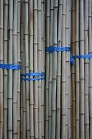 50 x Bambusrohr  2-3 cm 1m Paket Bambusrohre Bambusstange Bambusstangen Bambus