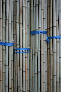 10 x Bambusrohr  2-3 cm 2m Bambusrohre Bambusstange Bambusstangen Bambus
