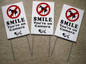 """3 NO DOG POOP - SMILE YOU'RE ON CAMERA  8""""X12"""" Plastic Coroplast Signs w/Stakes"""