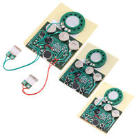 Hot ! 30sec Recordable Voice Module for Greeting Card Music Sound Talk chip SG