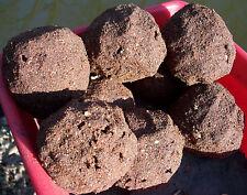 1Kg//1,25EUR Fertigfutter 1a Verfügbar 24 Kg Karpfen Karamell Angelfutter