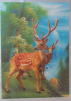 Two Stags  - 3D Lenticular single image 34cm x 24.5cm unframed