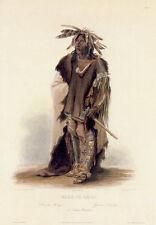 Sioux Indian Warrior Wahk Ta Ge Li 15x22 Karl Bodmer Native American Indian Art