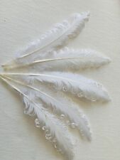 "5 WHITE Curly Nagoire Goose Feathers 6"" - 8""  15cm /20cm Millinery Hats Crafts"