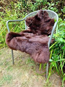 XXL British Jacobs Brown Sheepskin Rug - 95cm by 70cm A++ (2857)