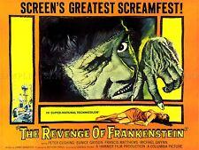 Movie Film REVENGE Frankenstein HORROR Scream Arte Poster Stampa lv6847