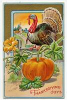 042820 LOVELY VINTAGE THANKSGIVING POSTCARD TURKEY AND PUMPKIN c 1910
