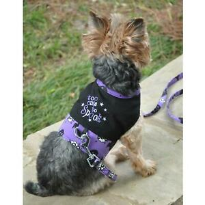 Too Cute To Spook Halloween Dog Harness & Matching Leash XS-L