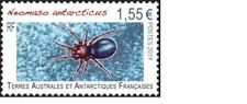 fsat 2019 taaf antarctic  spider insects insectes insekten NEOMASO 1v mnh **