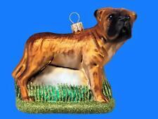 Lrg Bullmastiff Dog European Blown Glass Christmas Tree Ornament Hunde