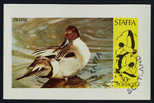 Staffa  s/s used - Pintail Duck