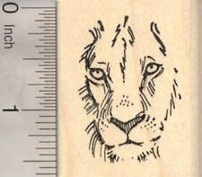 Lion Face Rubber Stamp, Wildlife, Big cat E18532 WM