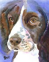Springer Spaniel Dog 11x14 signed art PRINT RJK
