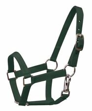 GREEN PONY Size Western Nylon Halter w/ Nickel Plated Hardware! NEW HORSE TACK!!